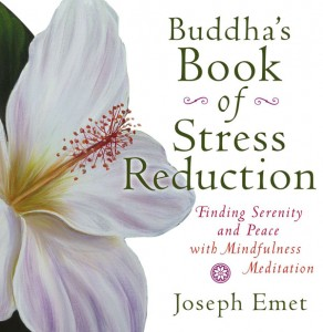 buddhas_book_of_stress_reduction_600